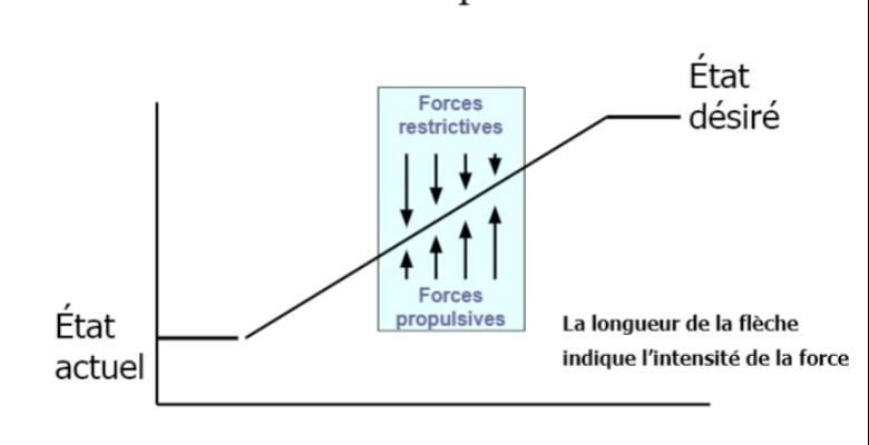 Théorie des champs de forces